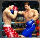 拳击明星冠军3D