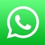 whatsapp messenger安卓手机版  6.5