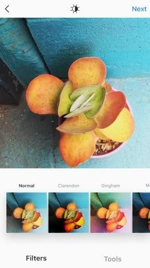 instagram安卓版IOS版